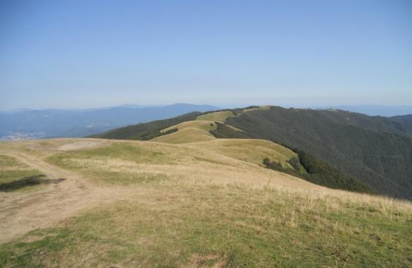Mt Pratomagno